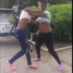 Big Tittie Black Skank Fight